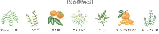 h4_01_graf02.jpg